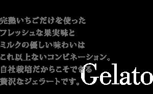 完熟いちごジェラートtit7